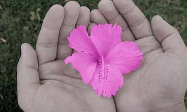 flower-in-hands